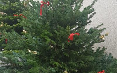La magie de Noël règne à Sainte Marie